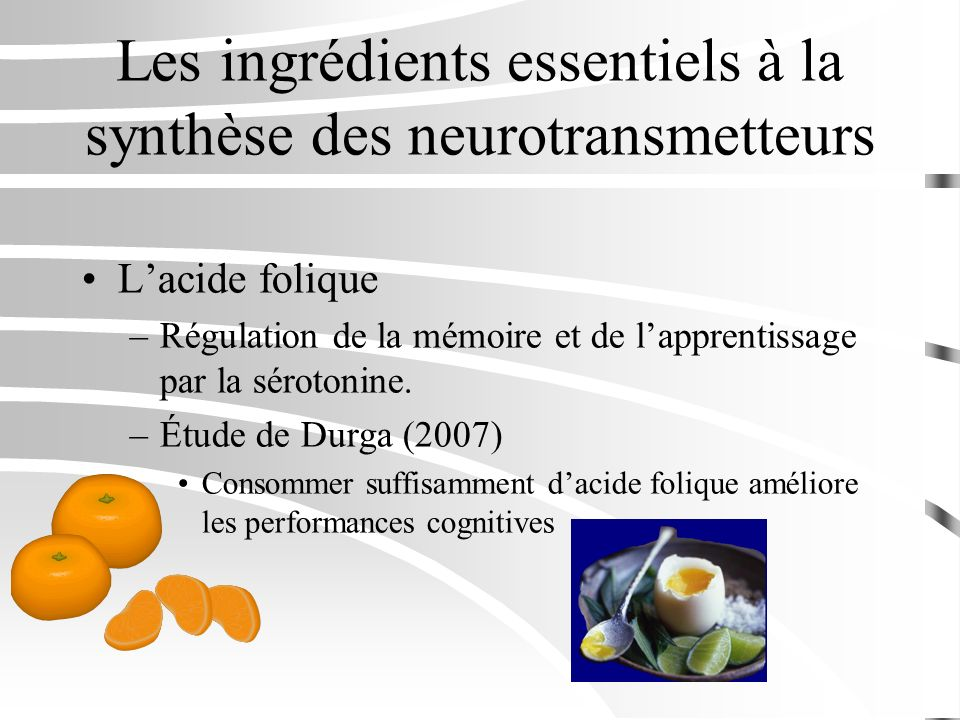 Les ingrédients essentiels à la synthèse des neurotransmetteurs Lacide folique –Régulation de la mémoire et de lapprentissage par la sérotonine. –Étud