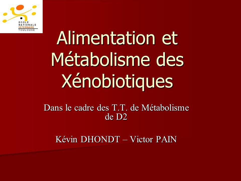 Alimentation et Métabolisme des Xénobiotiques Dans le cadre des T.T.