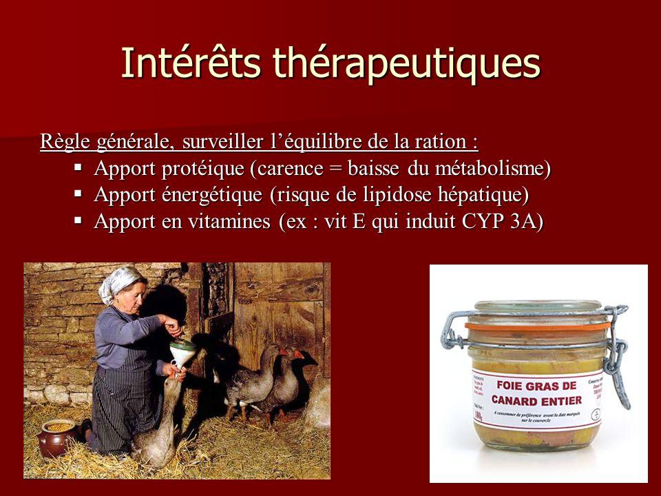 Intérêts thérapeutiques Règle générale, surveiller léquilibre de la ration : Apport protéique (carence = baisse du métabolisme) Apport protéique (carence = baisse du métabolisme) Apport énergétique (risque de lipidose hépatique) Apport énergétique (risque de lipidose hépatique) Apport en vitamines (ex : vit E qui induit CYP 3A) Apport en vitamines (ex : vit E qui induit CYP 3A)