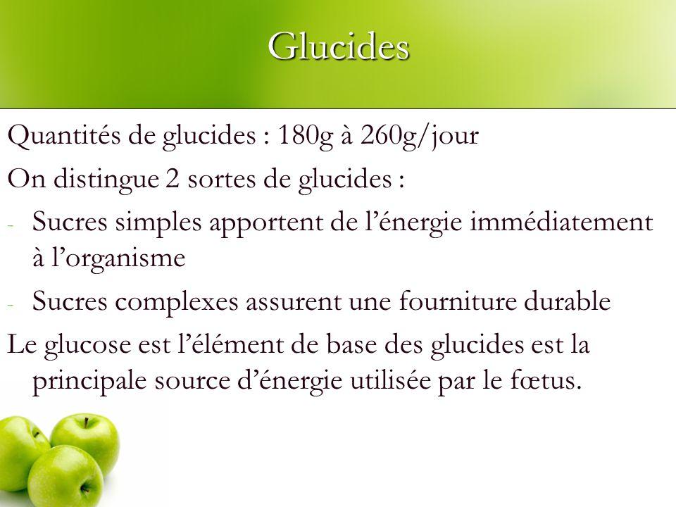 Glucides Quantités de glucides : 180g à 260g/jour On distingue 2 sortes de glucides : - Sucres simples apportent de lénergie immédiatement à lorganisme - Sucres complexes assurent une fourniture durable Le glucose est lélément de base des glucides est la principale source dénergie utilisée par le fœtus.