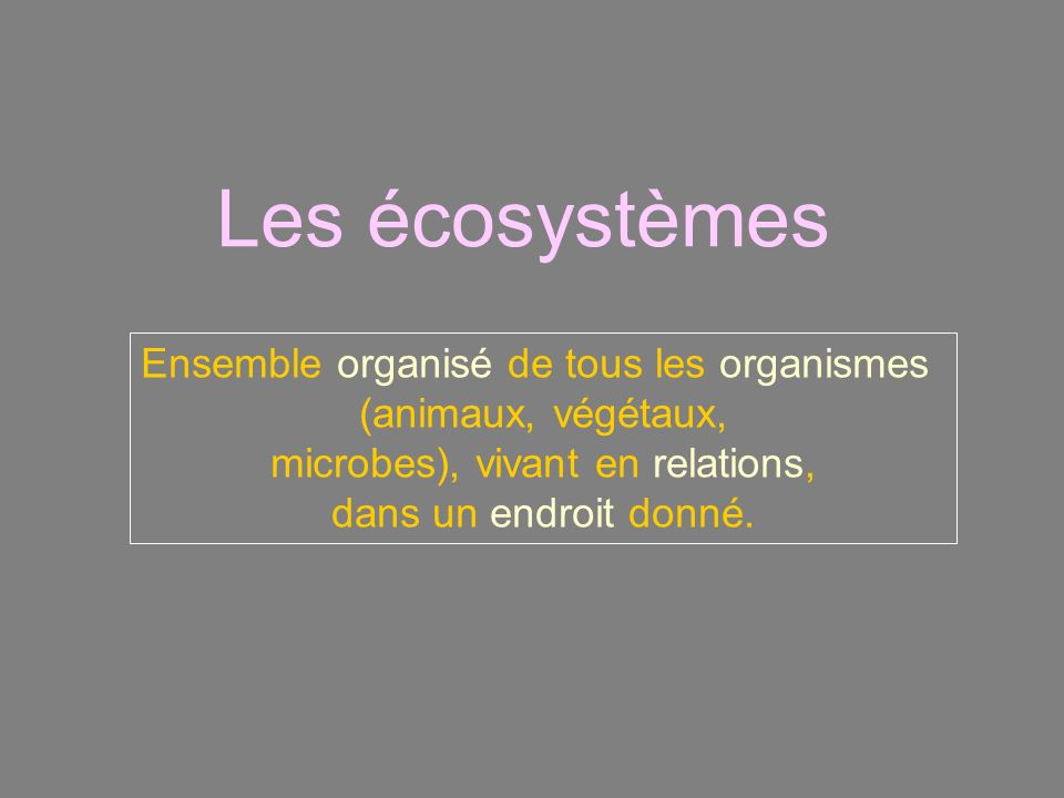 Les écosystèmes Ensemble organisé de tous les organismes (animaux, végétaux, microbes), vivant en relations, dans un endroit donné.