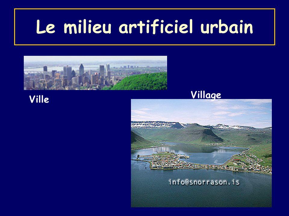 Le milieu artificiel urbain Ville Village