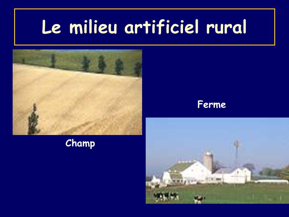 Le milieu artificiel rural Champ Ferme