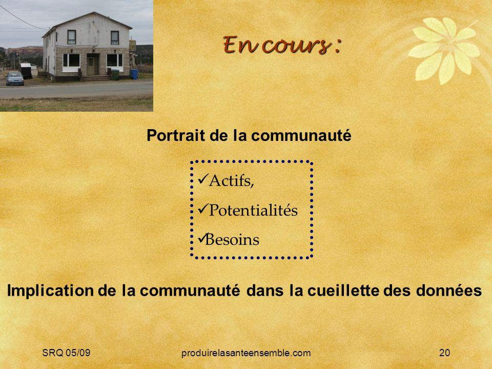 SRQ 05/09produirelasanteensemble.com20 En cours : Portrait de la communauté Implication de la communauté dans la cueillette des données Actifs, Potentialités Besoins