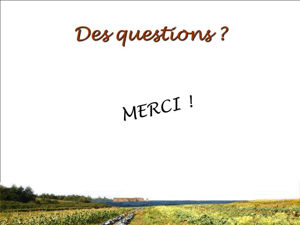 SRQ 05/09produirelasanteensemble.com32 Des questions ? MERCI !