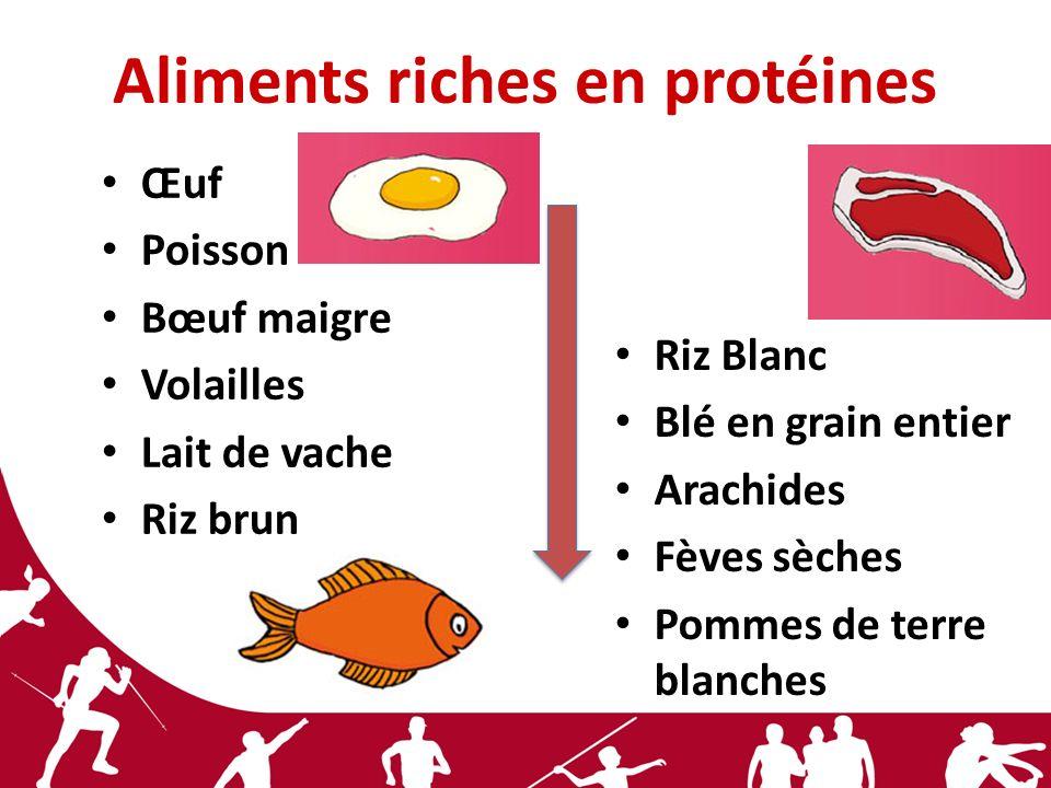 Aliments riches en protéines Œuf Poisson Bœuf maigre Volailles Lait de vache Riz brun Riz Blanc Blé en grain entier Arachides Fèves sèches Pommes de t