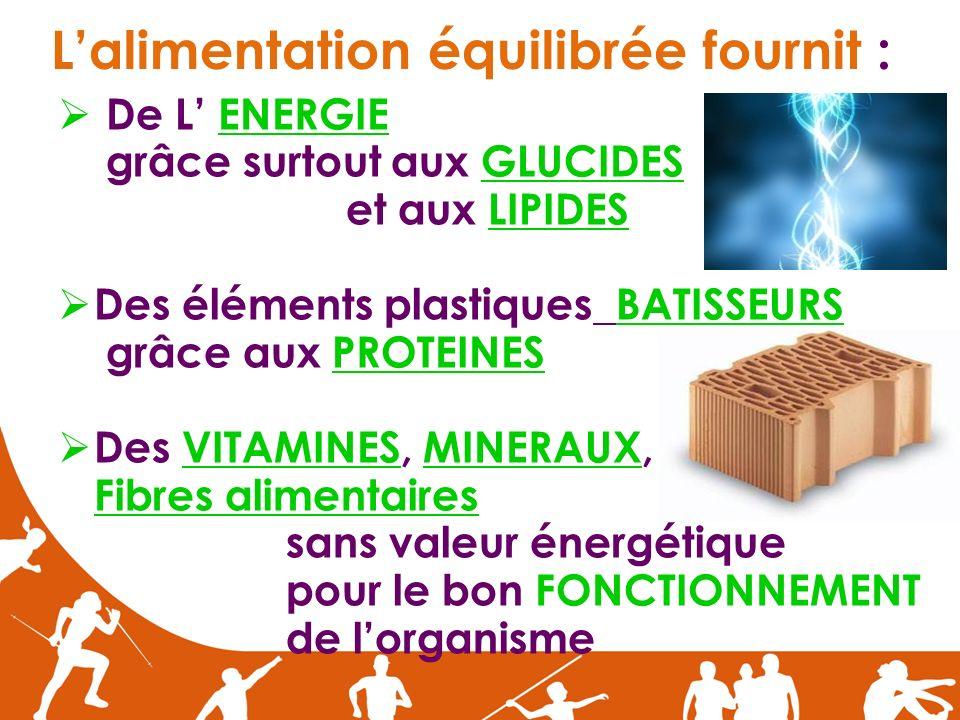 Lalimentation équilibrée fournit : De L ENERGIE grâce surtout aux GLUCIDES et aux LIPIDES Des éléments plastiques BATISSEURS grâce aux PROTEINES Des V