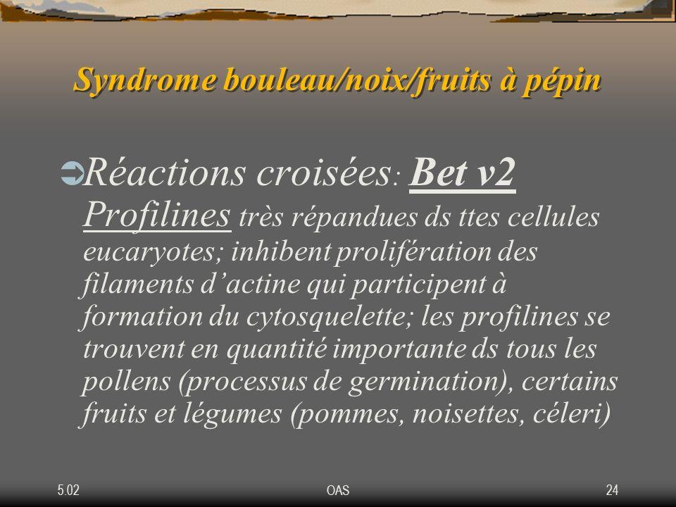 5.02OAS24 Syndrome bouleau/noix/fruits à pépin Réactions croisées : Bet v2 Profilines très répandues ds ttes cellules eucaryotes; inhibent proliférati