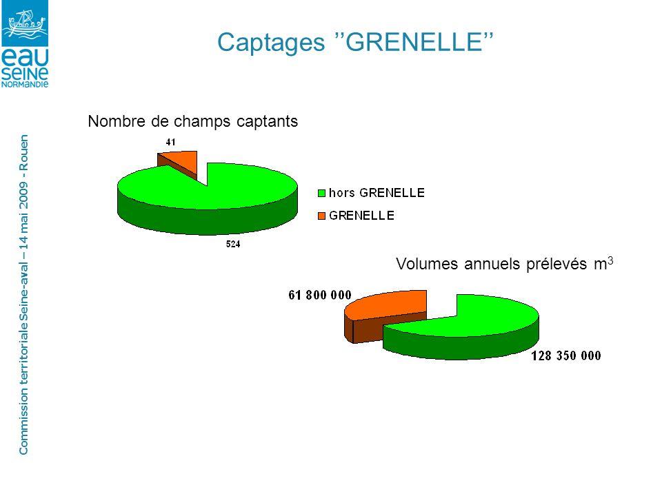Commission territoriale Seine-aval – 14 mai 2009 - Rouen Captages GRENELLE Nombre de champs captants Volumes annuels prélevés m 3