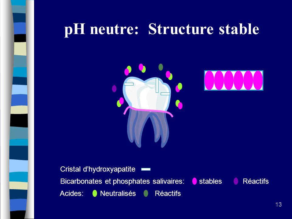 13 Environnement de la dent Cristal dhydroxyapatite Bicarbonates et phosphates salivaires: stables Réactifs Acides: Neutralisés Réactifs pH neutre: Structure stable