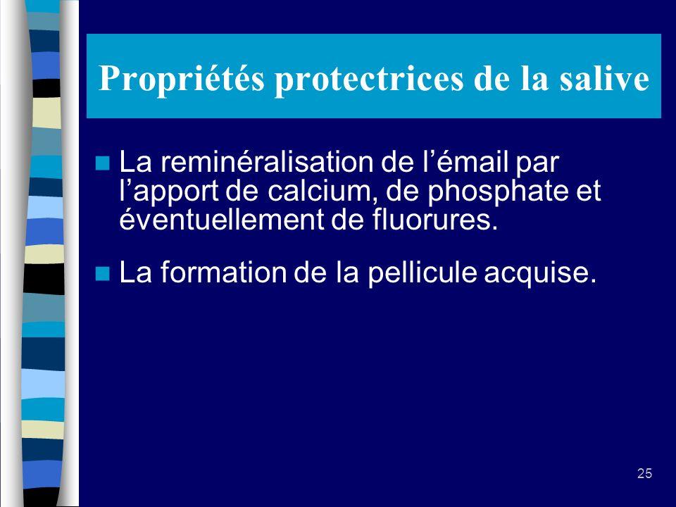 25 Propriétés protectrices de la salive La reminéralisation de lémail par lapport de calcium, de phosphate et éventuellement de fluorures.