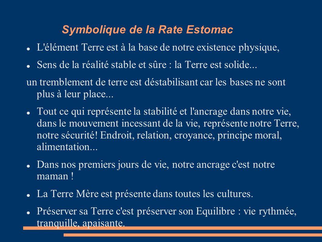 Symbolique de la Rate Estomac L élément Terre est à la base de notre existence physique, Sens de la réalité stable et sûre : la Terre est solide...