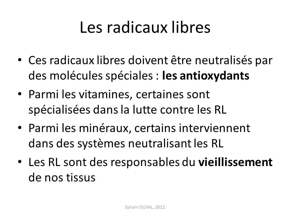 Les radicaux libres Ces radicaux libres doivent être neutralisés par des molécules spéciales : les antioxydants Parmi les vitamines, certaines sont sp