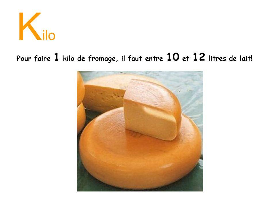 K ilo Pour faire 1 kilo de fromage, il faut entre 10 et 12 litres de lait!