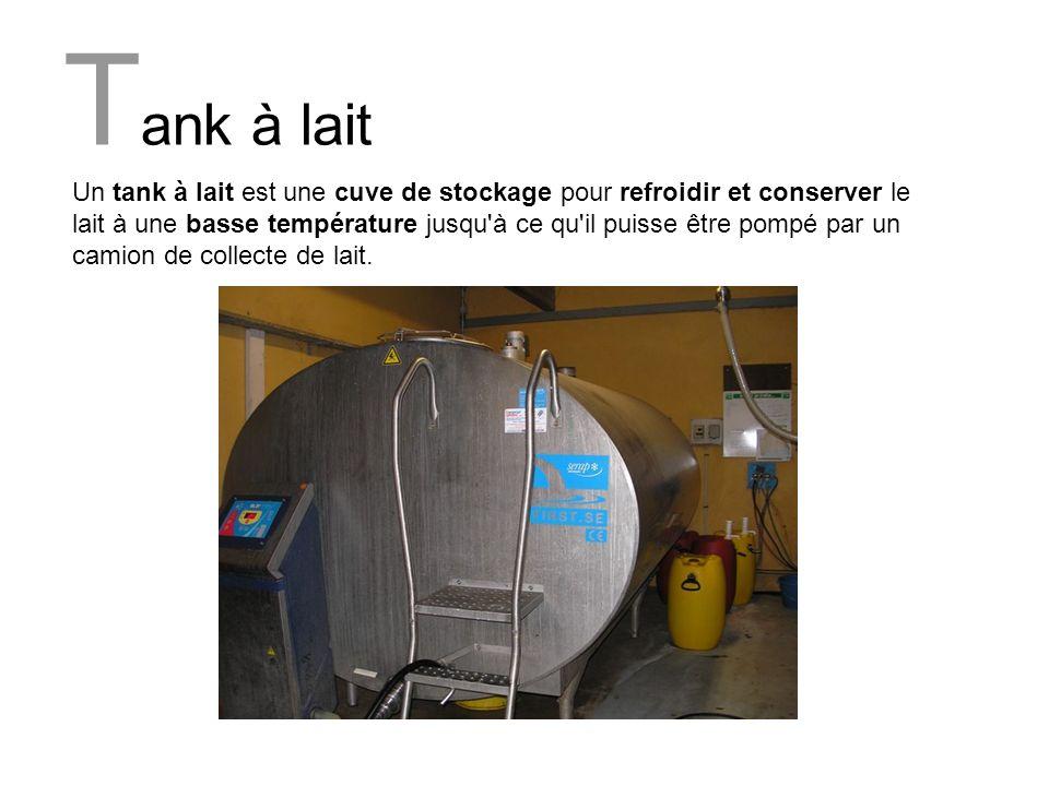 T ank à lait Un tank à lait est une cuve de stockage pour refroidir et conserver le lait à une basse température jusqu'à ce qu'il puisse être pompé pa