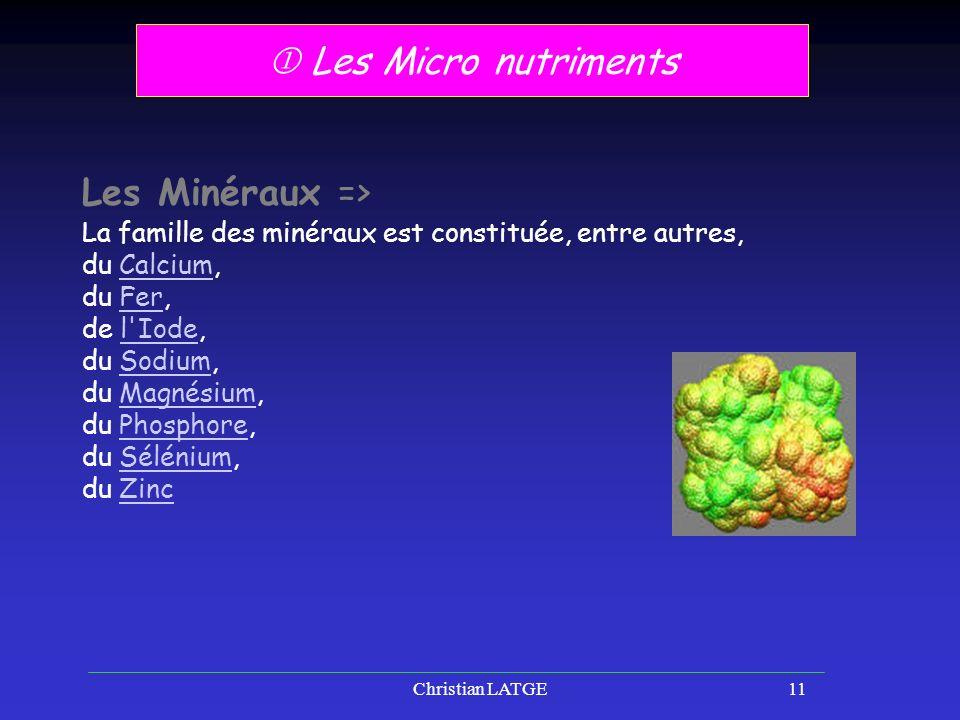 Christian LATGE11 Les Micro nutriments Les Minéraux => La famille des minéraux est constituée, entre autres, du Calcium,Calcium du Fer,Fer de l Iode,l Iode du Sodium,Sodium du Magnésium,Magnésium du Phosphore,Phosphore du Sélénium,Sélénium du ZincZinc
