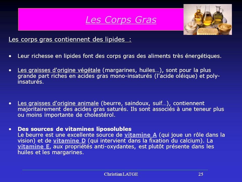 Christian LATGE25 Les Corps Gras Les corps gras contiennent des lipides : Leur richesse en lipides font des corps gras des aliments très énergétiques.
