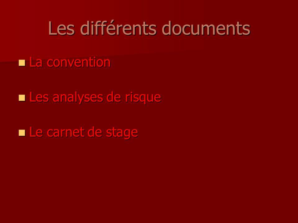 Les différents documents La convention La convention Les analyses de risque Les analyses de risque Le carnet de stage Le carnet de stage