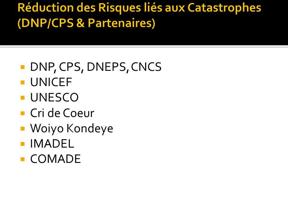 DNP, CPS, DNEPS, CNCS UNICEF UNESCO Cri de Coeur Woiyo Kondeye IMADEL COMADE