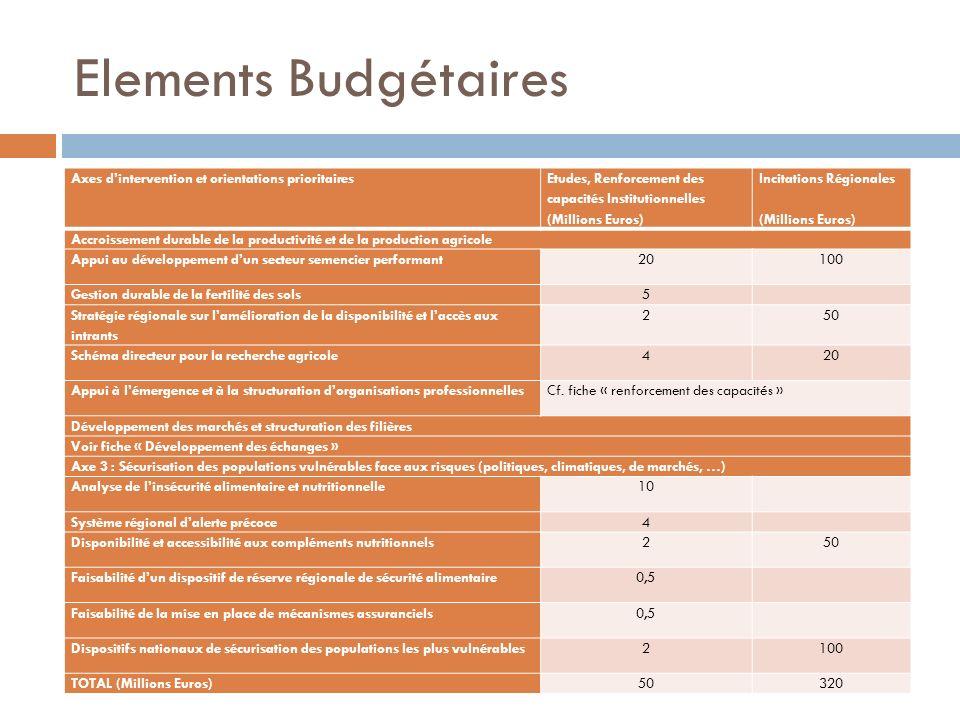 Elements Budgétaires Axes dintervention et orientations prioritaires Etudes, Renforcement des capacités Institutionnelles (Millions Euros) Incitations