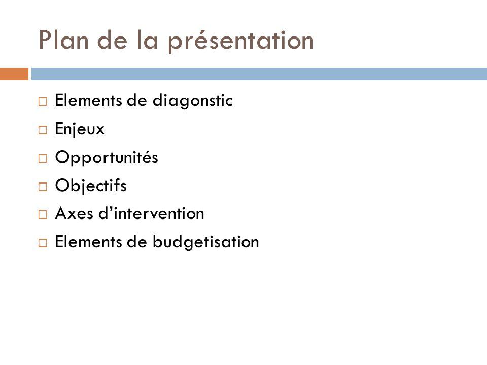 Plan de la présentation Elements de diagonstic Enjeux Opportunités Objectifs Axes dintervention Elements de budgetisation
