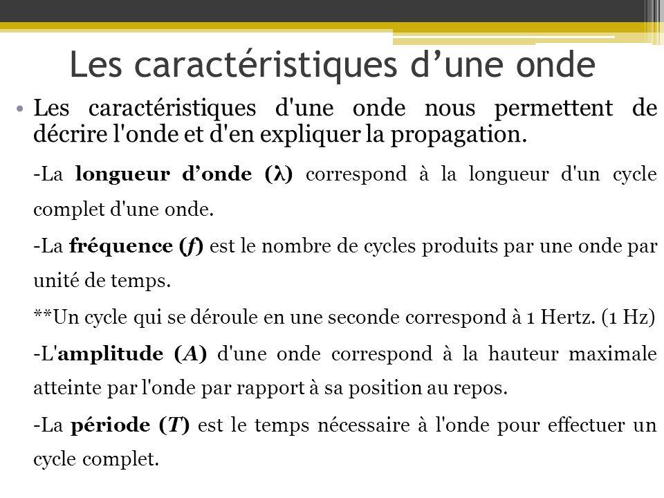 Les caractéristiques dune onde T A