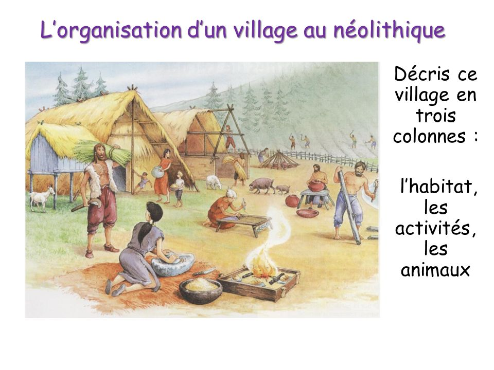 Lorganisation dun village au néolithique Décris ce village en trois colonnes : lhabitat, les activités, les animaux