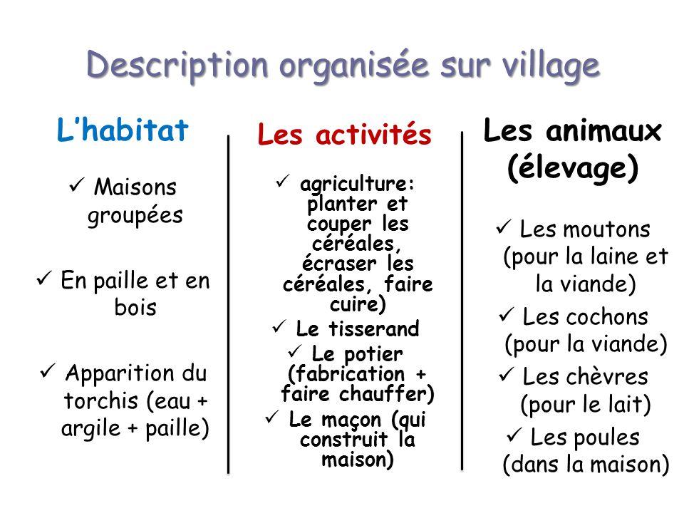 Description organisée sur village Lhabitat Maisons groupées En paille et en bois Apparition du torchis (eau + argile + paille) Les activités agricultu