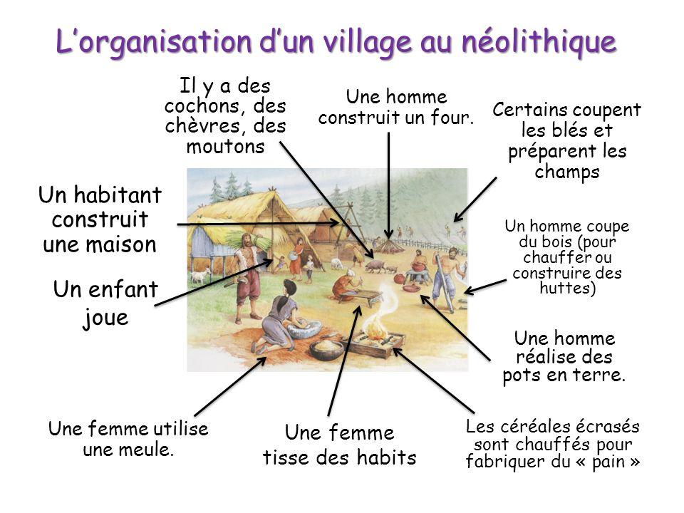 Lorganisation dun village au néolithique Un habitant construit une maison Un enfant joue Il y a des cochons, des chèvres, des moutons Certains coupent