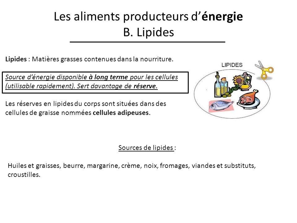 Les aliments producteurs dénergie B. Lipides Lipides : Matières grasses contenues dans la nourriture. Source dénergie disponible à long terme pour les