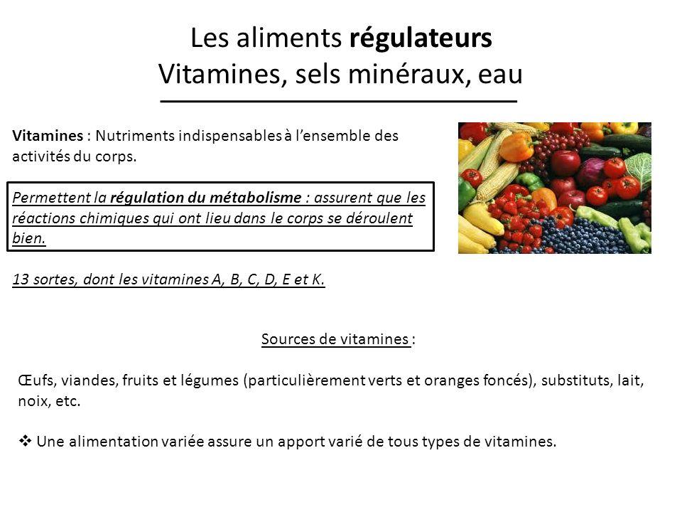 Les aliments régulateurs Vitamines, sels minéraux, eau Vitamines : Nutriments indispensables à lensemble des activités du corps. Permettent la régulat