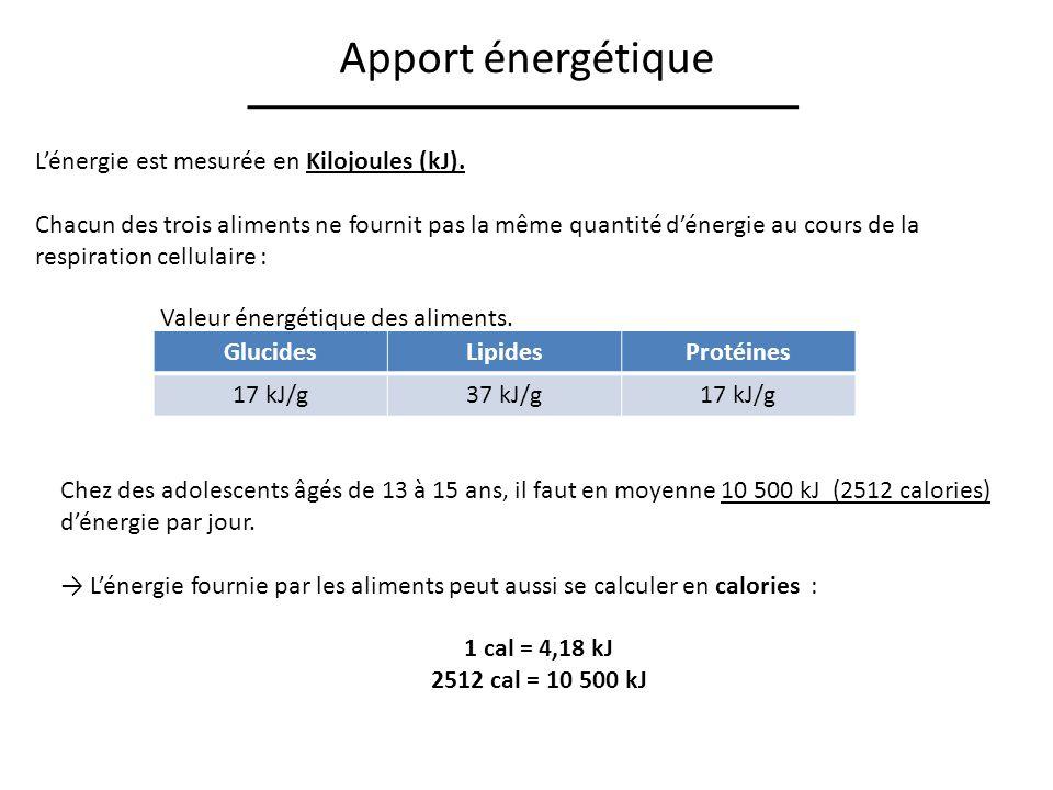 Apport énergétique Lénergie est mesurée en Kilojoules (kJ). Chacun des trois aliments ne fournit pas la même quantité dénergie au cours de la respirat