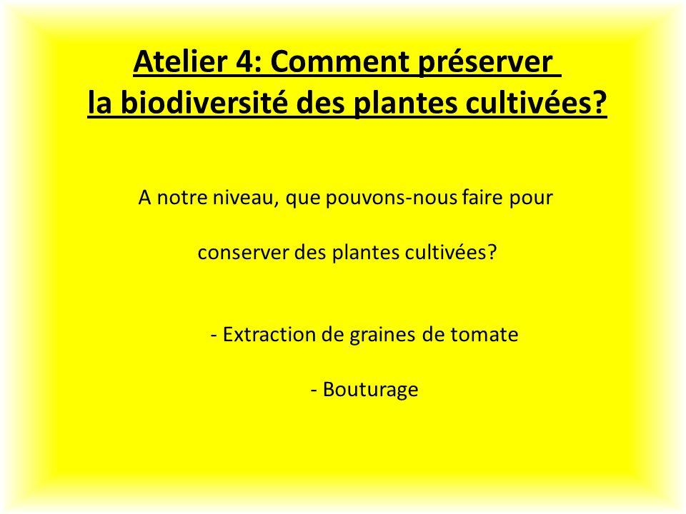 Atelier 4: Comment préserver la biodiversité des plantes cultivées.