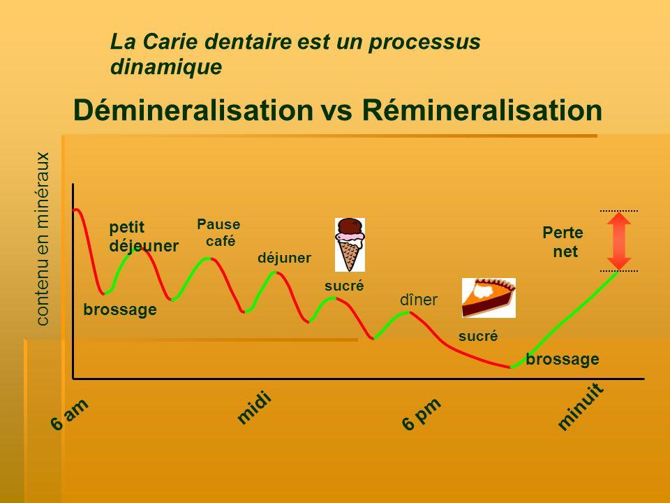 La Carie dentaire est un processus dinamique Démineralisation vs Rémineralisation petit déjeuner déjuner Pause café sucré dîner sucré minuit 6 am bros