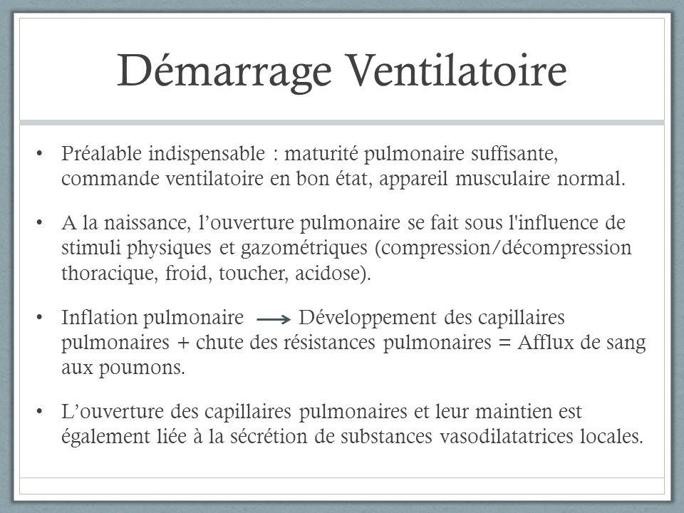 Démarrage Ventilatoire Préalable indispensable : maturité pulmonaire suffisante, commande ventilatoire en bon état, appareil musculaire normal. A la n