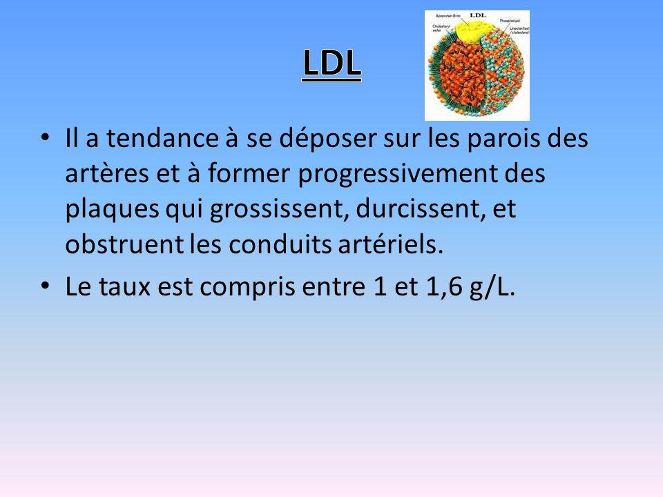 Le cholestérol est un tueur silencieux qui encrasse nos artères Il y a deux types de cholestérol : Le LDL «le mauvais » Le HDL « le bon »