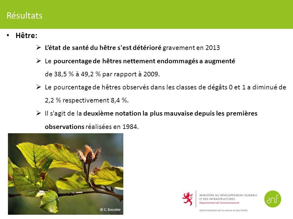 Résultats Hêtre: Létat de santé du hêtre s est détérioré gravement en 2013 Le pourcentage de hêtres nettement endommagés a augmenté de 38,5 % à 49,2 % par rapport à 2009.