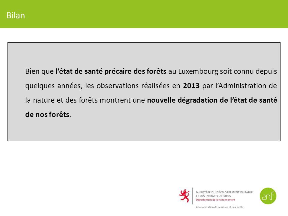 Bilan Bien que létat de santé précaire des forêts au Luxembourg soit connu depuis quelques années, les observations réalisées en 2013 par lAdministration de la nature et des forêts montrent une nouvelle dégradation de létat de santé de nos forêts.