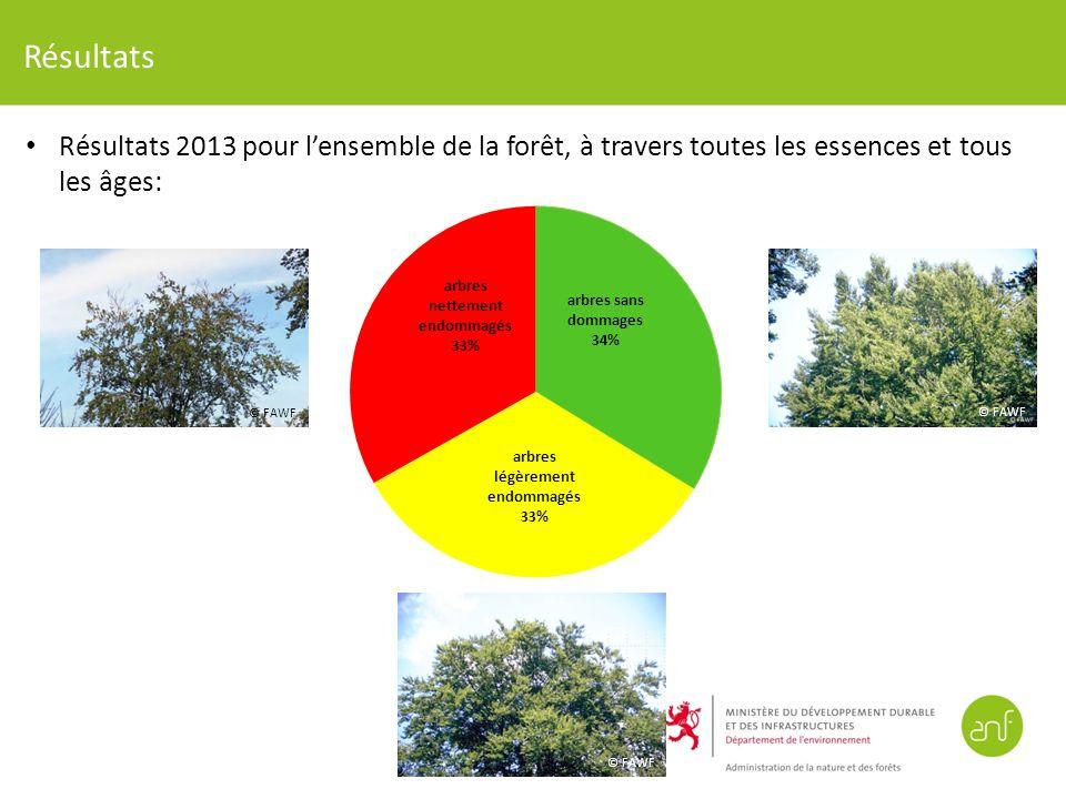 Résultats Résultats 2013 pour lensemble de la forêt, à travers toutes les essences et tous les âges: © FAWF