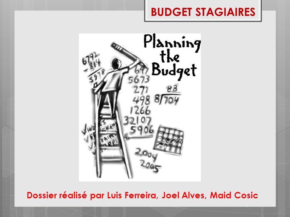 BUDGET STAGIAIRES Dossier réalisé par Luis Ferreira, Joel Alves, Maid Cosic