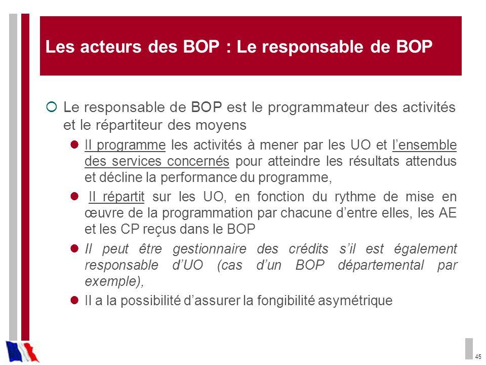 45 Les acteurs des BOP : Le responsable de BOP Le responsable de BOP est le programmateur des activités et le répartiteur des moyens Il programme les
