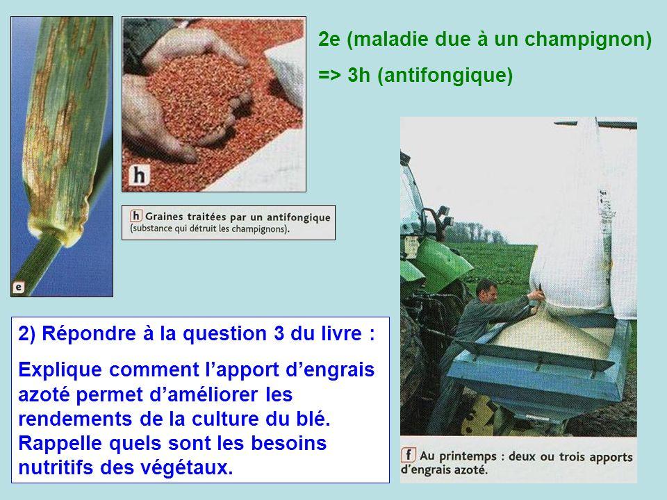 2) Répondre à la question 3 du livre : Explique comment lapport dengrais azoté permet daméliorer les rendements de la culture du blé. Rappelle quels s
