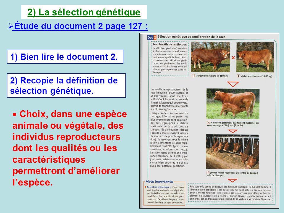 2) La sélection génétique Étude du document 2 page 127 : 1) Bien lire le document 2. 2) Recopie la définition de sélection génétique. Choix, dans une