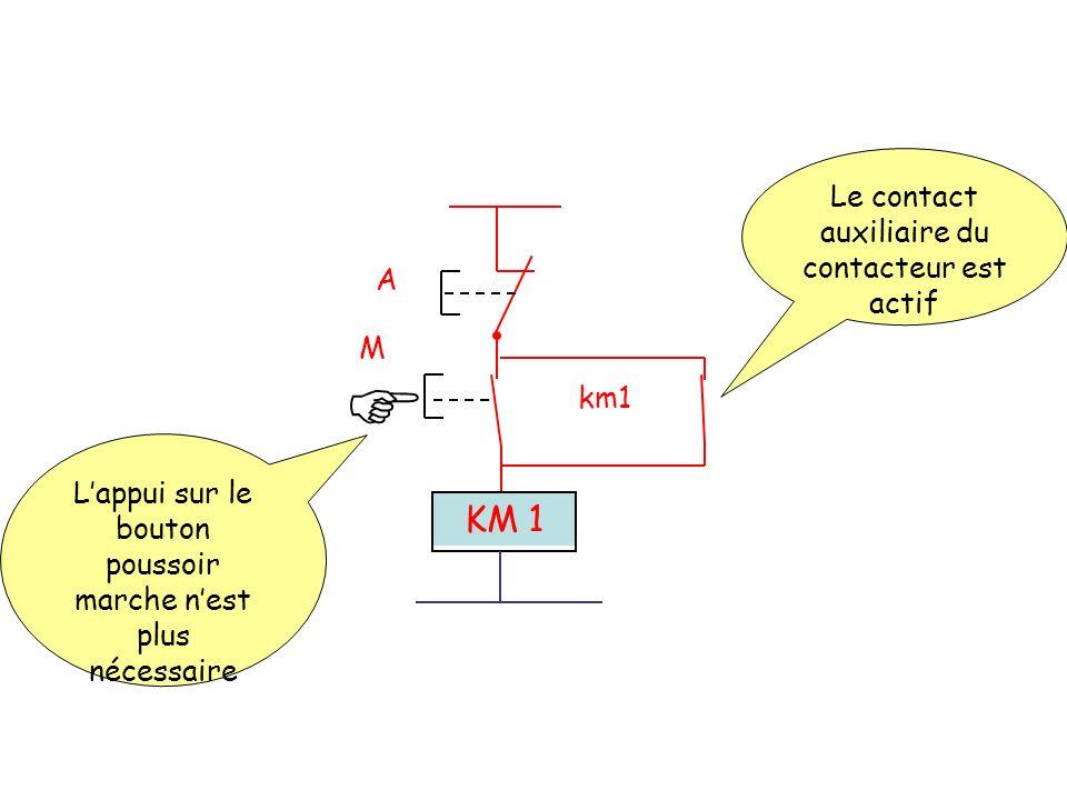 A M km1 KM 1 Le contact auxiliaire du contacteur est actif Lappui sur le bouton poussoir marche nest plus nécessaire