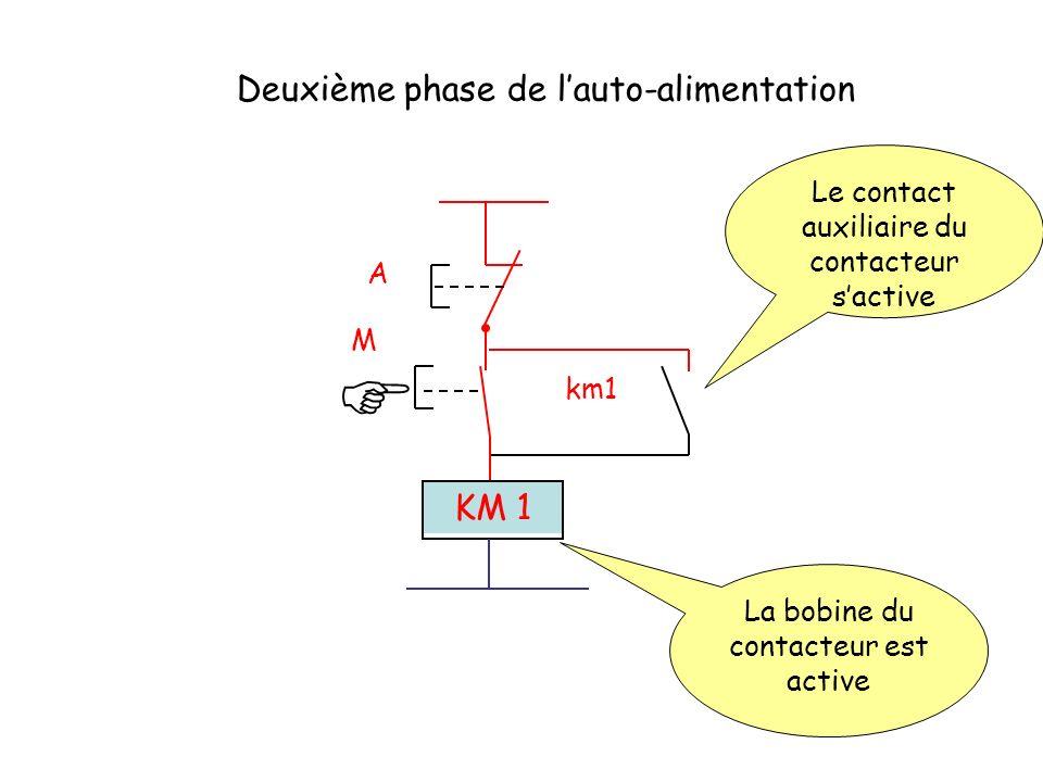 A M km1 KM 1 Deuxième phase de lauto-alimentation La bobine du contacteur est active Le contact auxiliaire du contacteur sactive