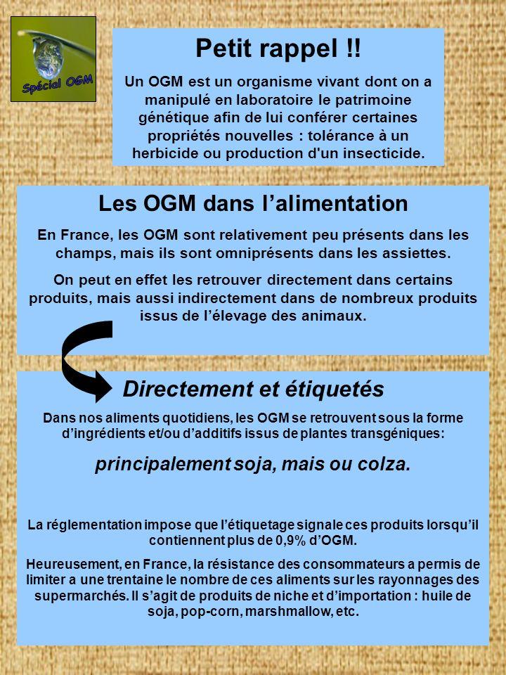 Indirectement et cachés La plupart des OGM est toutefois destinée a lalimentation des dizaines de millions danimaux élevés en France.