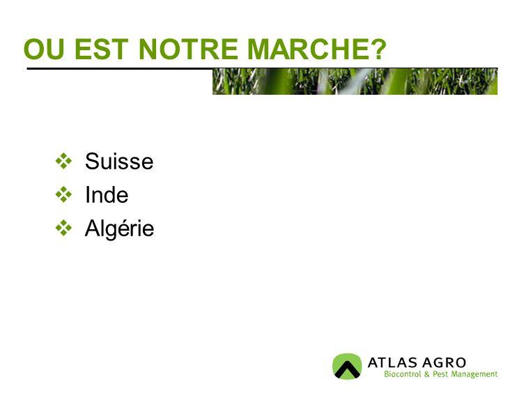 OU EST NOTRE MARCHE? Suisse Inde Algérie