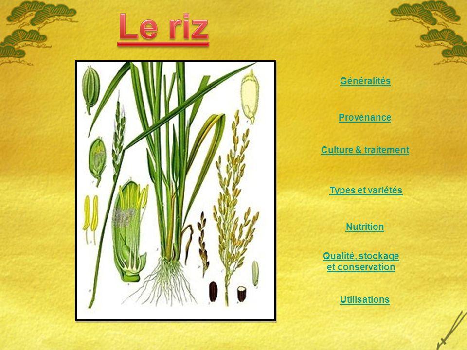 Provenance Culture & traitement Nutrition Qualité, stockage et conservation Types et variétés Utilisations Généralités