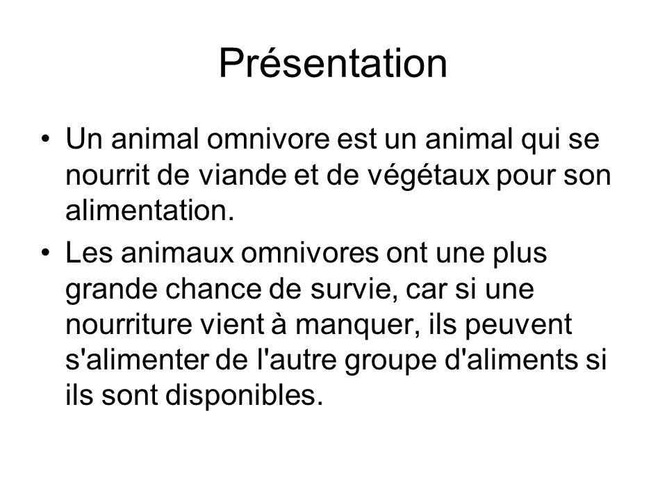 Présentation Un animal omnivore est un animal qui se nourrit de viande et de végétaux pour son alimentation. Les animaux omnivores ont une plus grande