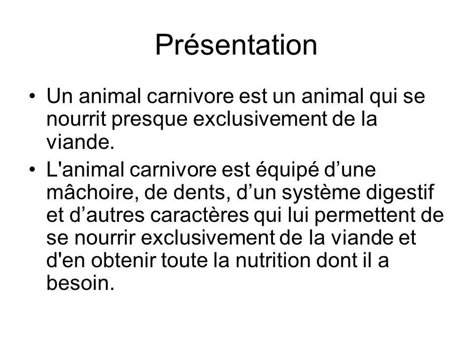 Présentation Un animal carnivore est un animal qui se nourrit presque exclusivement de la viande. L'animal carnivore est équipé dune mâchoire, de dent